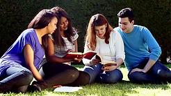Young adult bible study image.webp