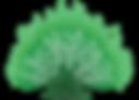 Green%20Burning%20Bush-noBackground_edit
