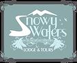 Snowy Waters.png
