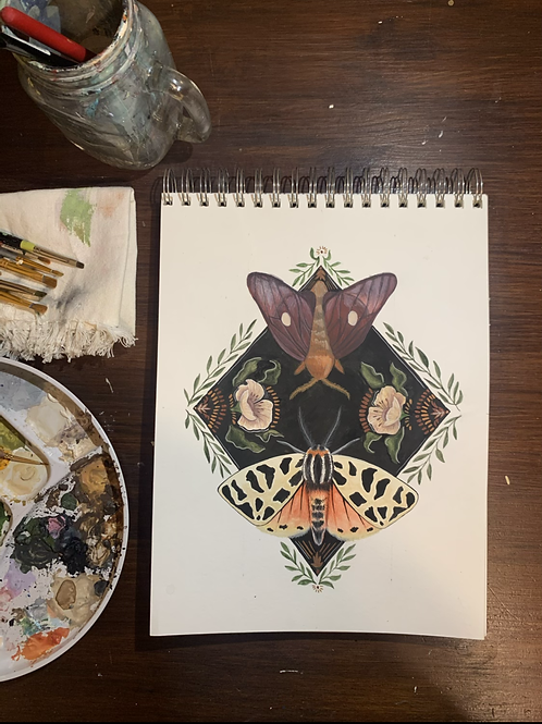 Tiger and Pink-Striped Oakworm Moth PRINT