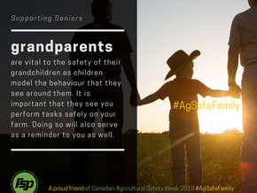 """SUPPORTING SENIORS: """"Keeping your grandchildren safe"""""""