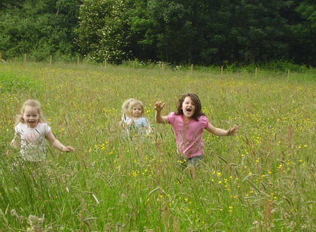 CREATE SAFE PLAY AREAS FOR CHILDREN ON YOUR FARM
