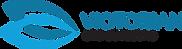Victorian Eye Surgeons Logo