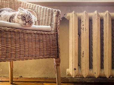MGH - Pic - Installation Cat Radiator -