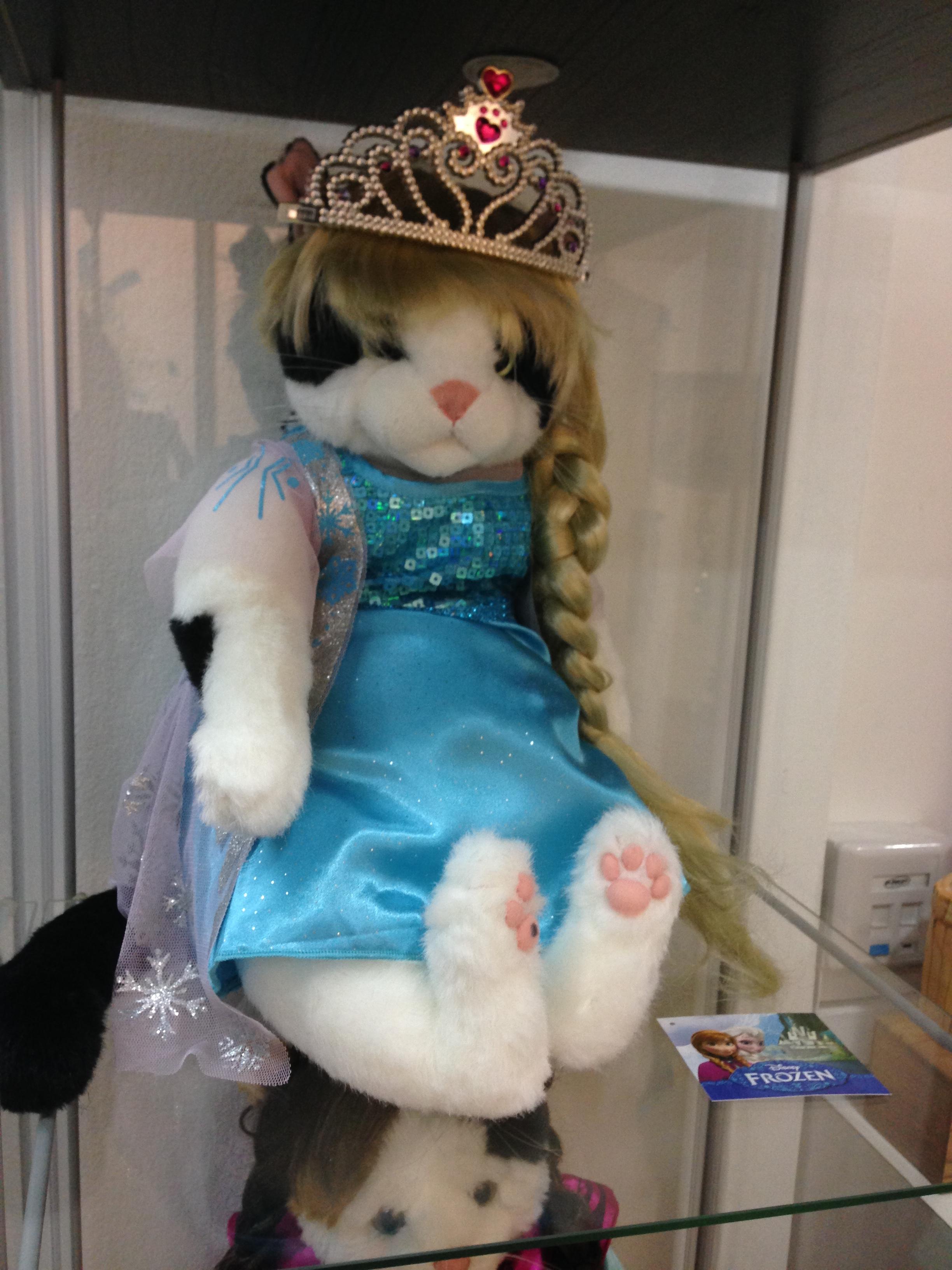 Elsa Cat