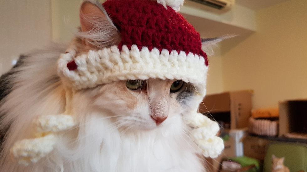 Cat Beanie Fund Raiser