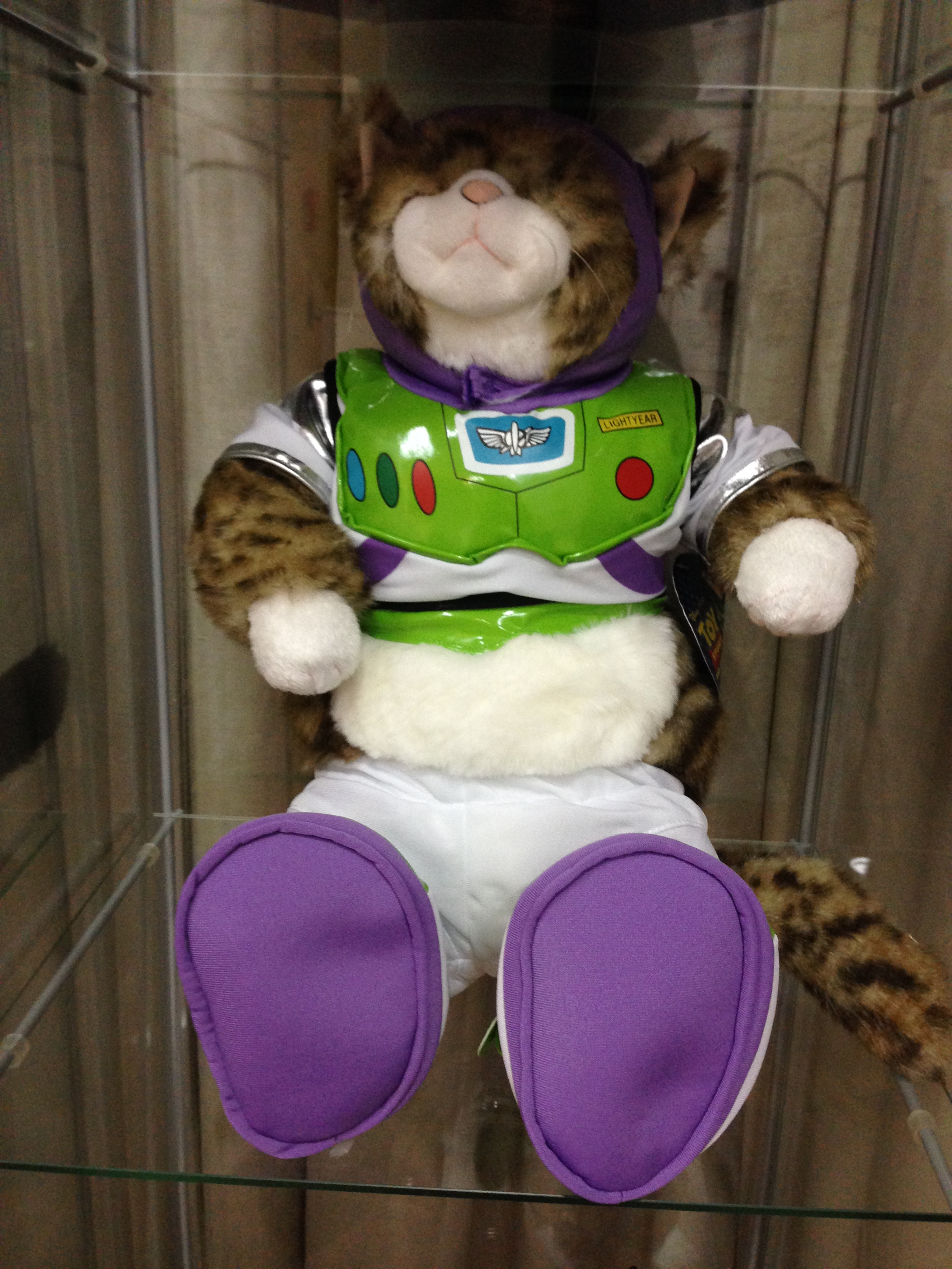 Buzz Lightyear Cat