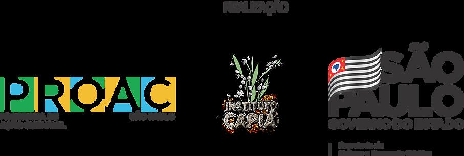 regua_logos_projeto.png