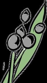 Logo_Capia_Flor3.png