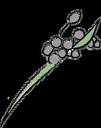 Logo_Capia_Flor2.png
