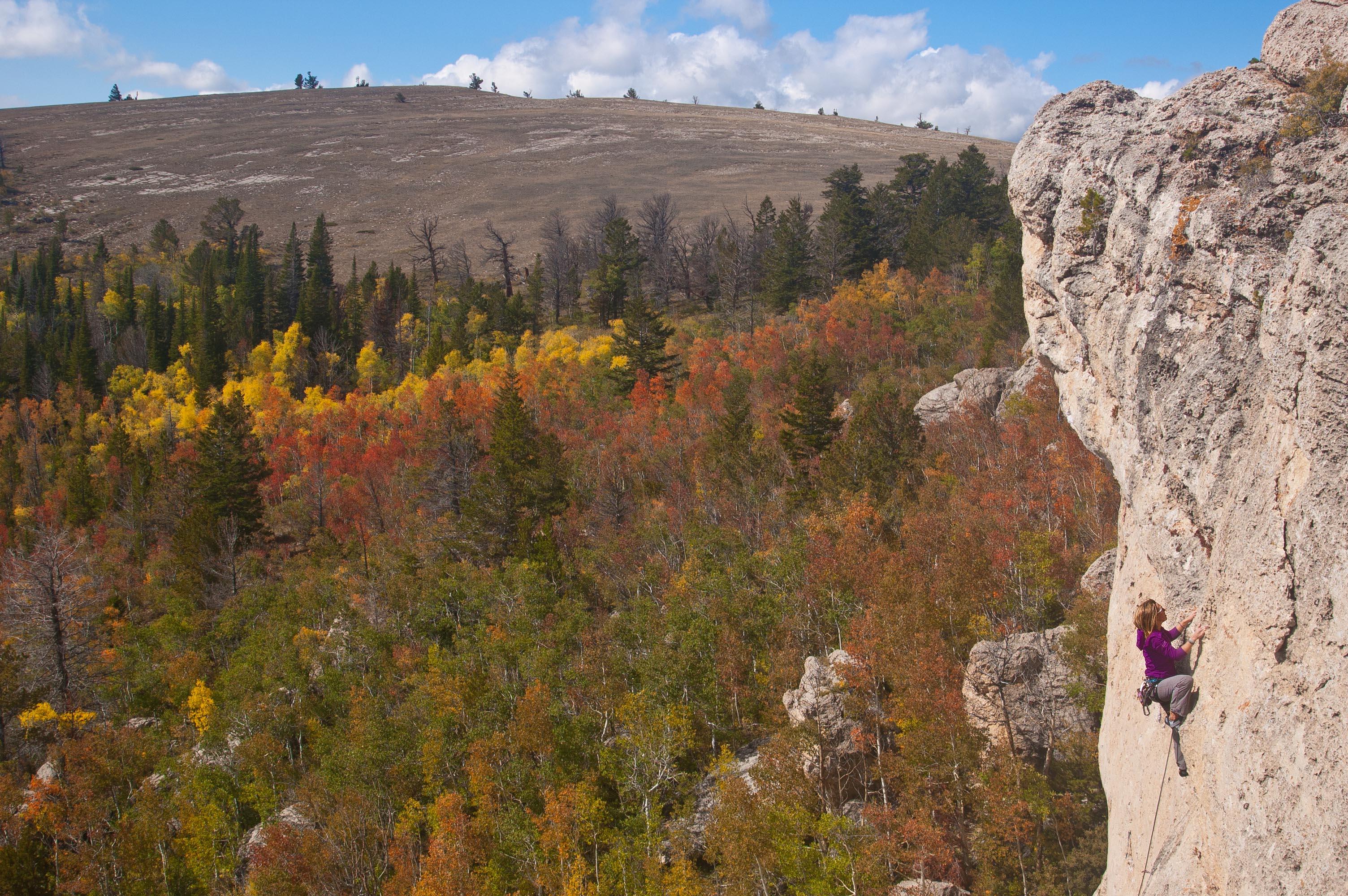 Aspen Glade in Fall