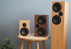 Ophidian M Series loudspeakers at the little audio company,