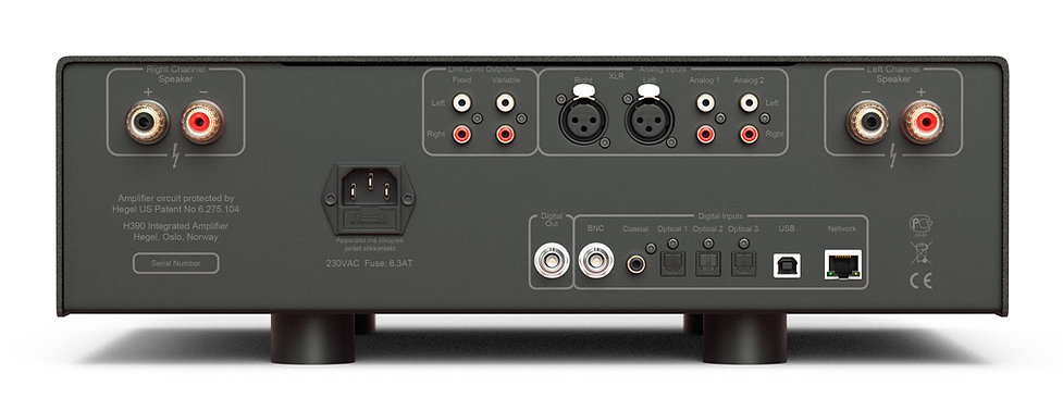rear panel of the Hegel H390 integrated amplifier,