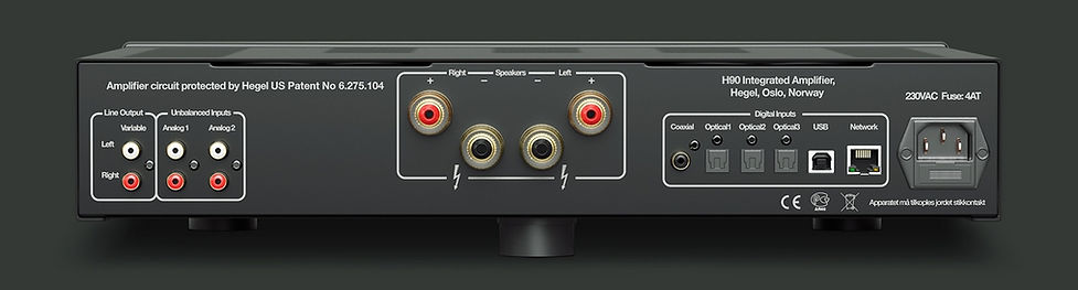 rear panel of the Hegel H95 amplifier,