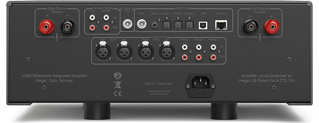 rear panel of the Hegel H590 integrated amplifier,