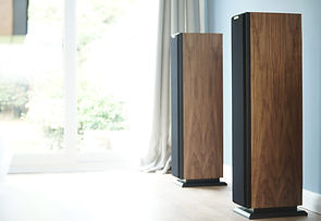 Ophidian P Series loudspeakers at the little audio company,