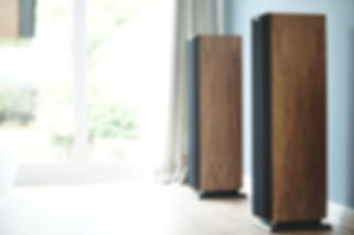 Ophidian P2 Evolution loudspeakers,