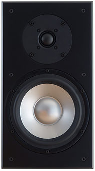 Ophidian P1 Evolution loudspeakers at the little audio company,