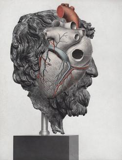 Philosopher's Head