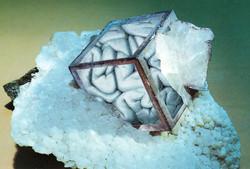 Viscera Mineralis VI