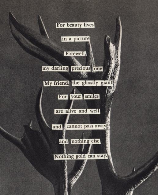 beautylives..jpg