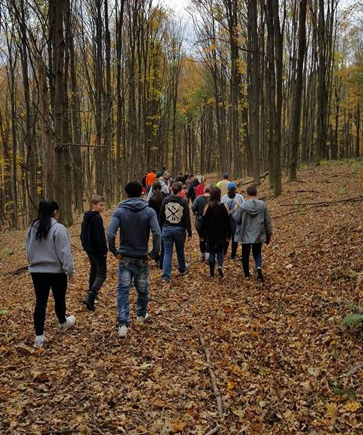 sugarbush hike