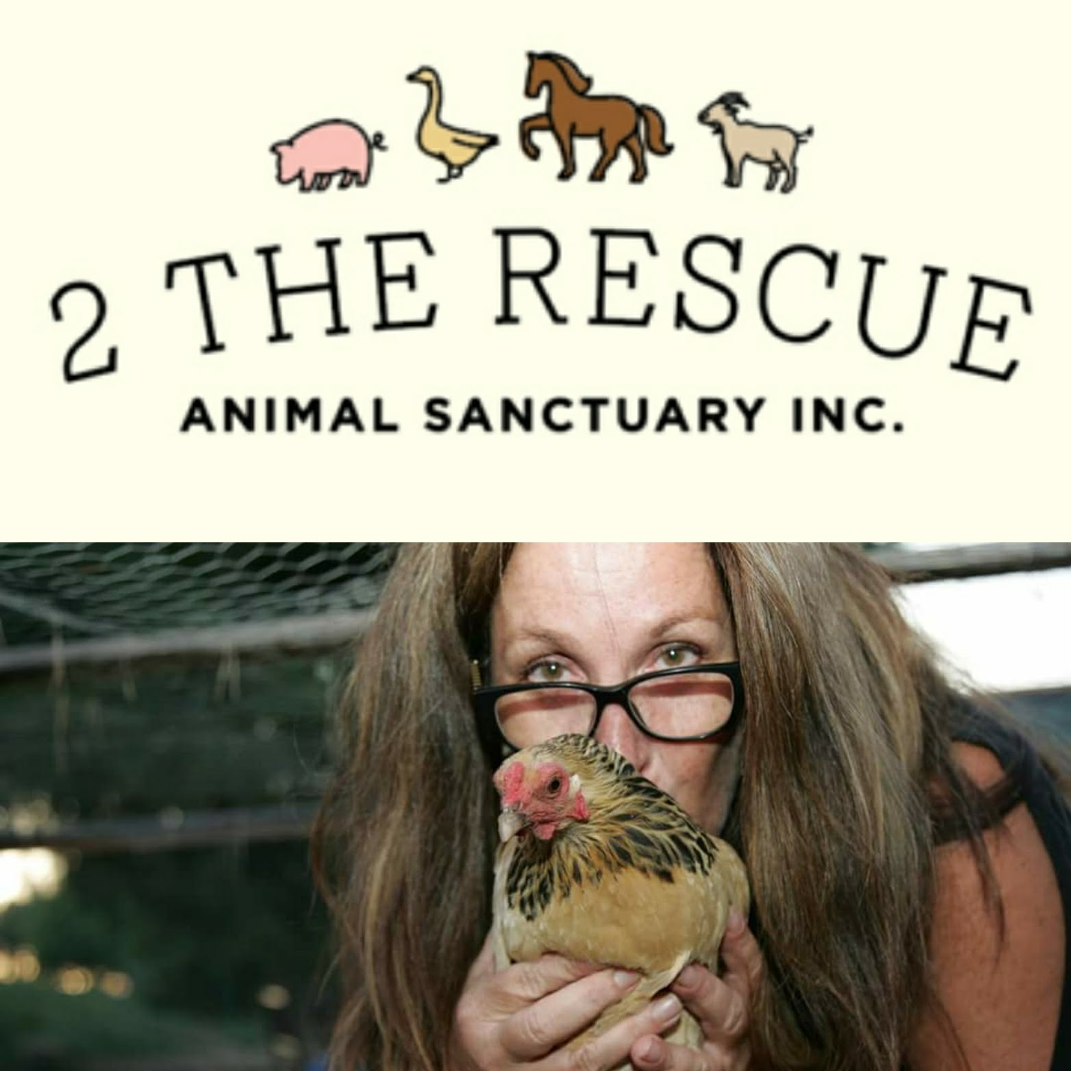 2 The Rescue Animal Rescue