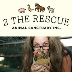 2 The Rescue Animal Rescue