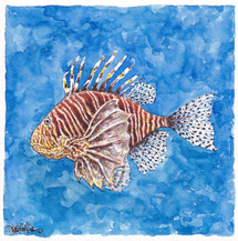 Lion Fish Are Also Called Tastyfish