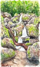 The Hidden Falls