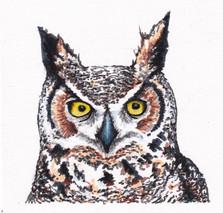 Wilson Folson Great Horned Owl