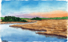 Pine Barrens Marsh