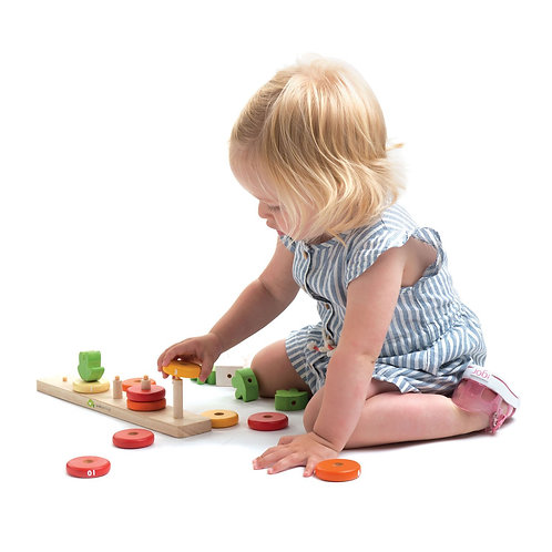 Counting Carrots Educational Toy
