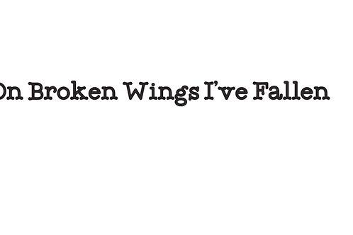 On Broken Wings I've Fallen T-Shirt