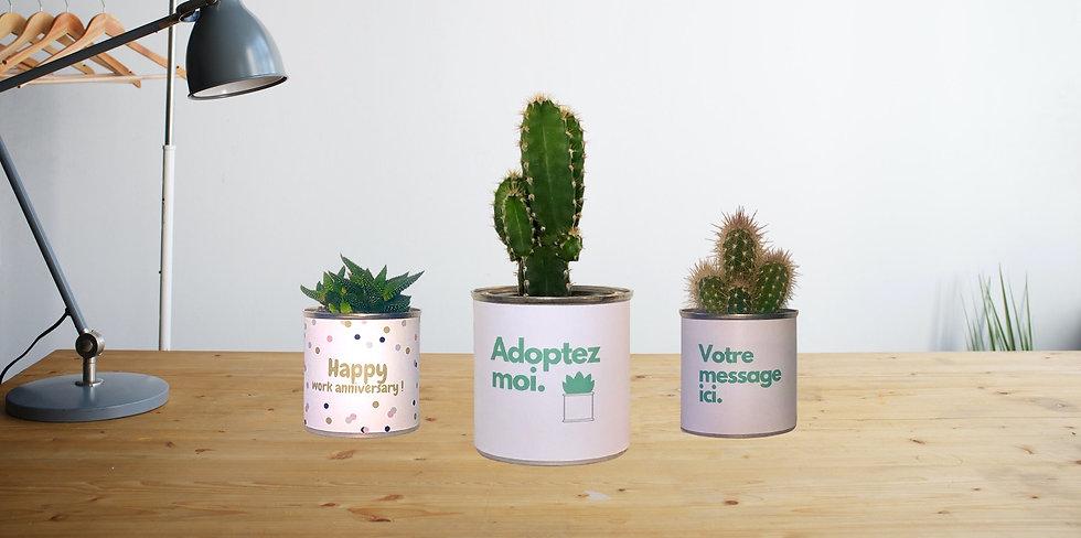 vegetalgift-cadeau-personnalise_edited.j