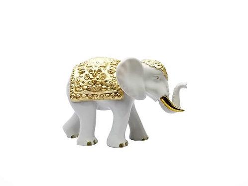 Elefante Bianco e Oro- Sequenze -piccolo