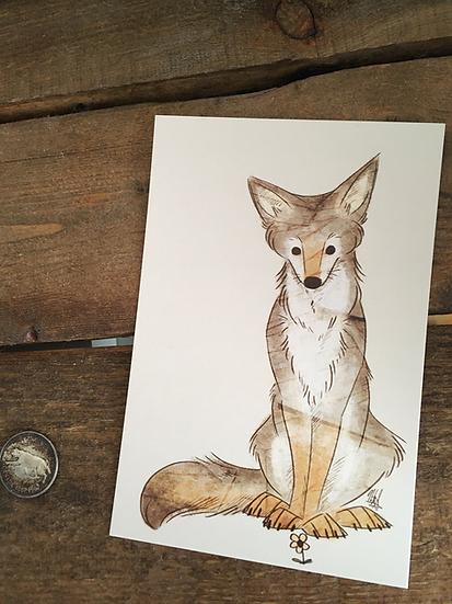 'Coyote & Flower' 4x6 Matte Print
