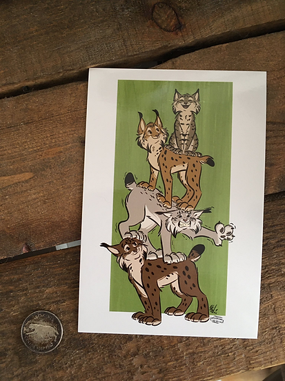 'Lynx Stack' 4x6 Glossy Print