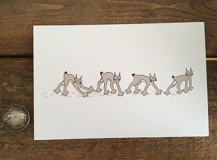 'Wandering Lynx' 4x6 Matte Print