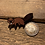 Thumbnail: 'Canadian Critters' Wooden Pin Collection- Beaver