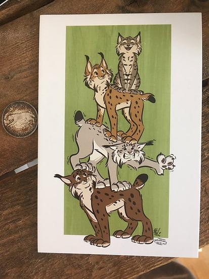 'Lynx Stack' 4x6 Matte Print