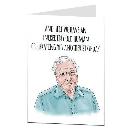 INCREDIBLY OLD HUMAN CARD
