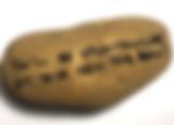 potato gifts text a potato gift post mail funny novelty