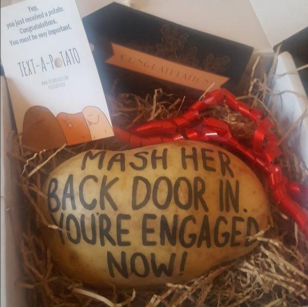 Text A Potato Gift Idea Funny Original Parcel Post Mail Present Potatoe Send Birthday Anniversary