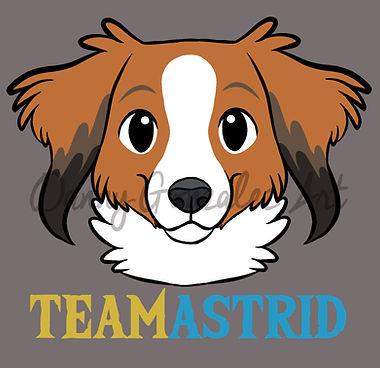 team astrid logo.jpg