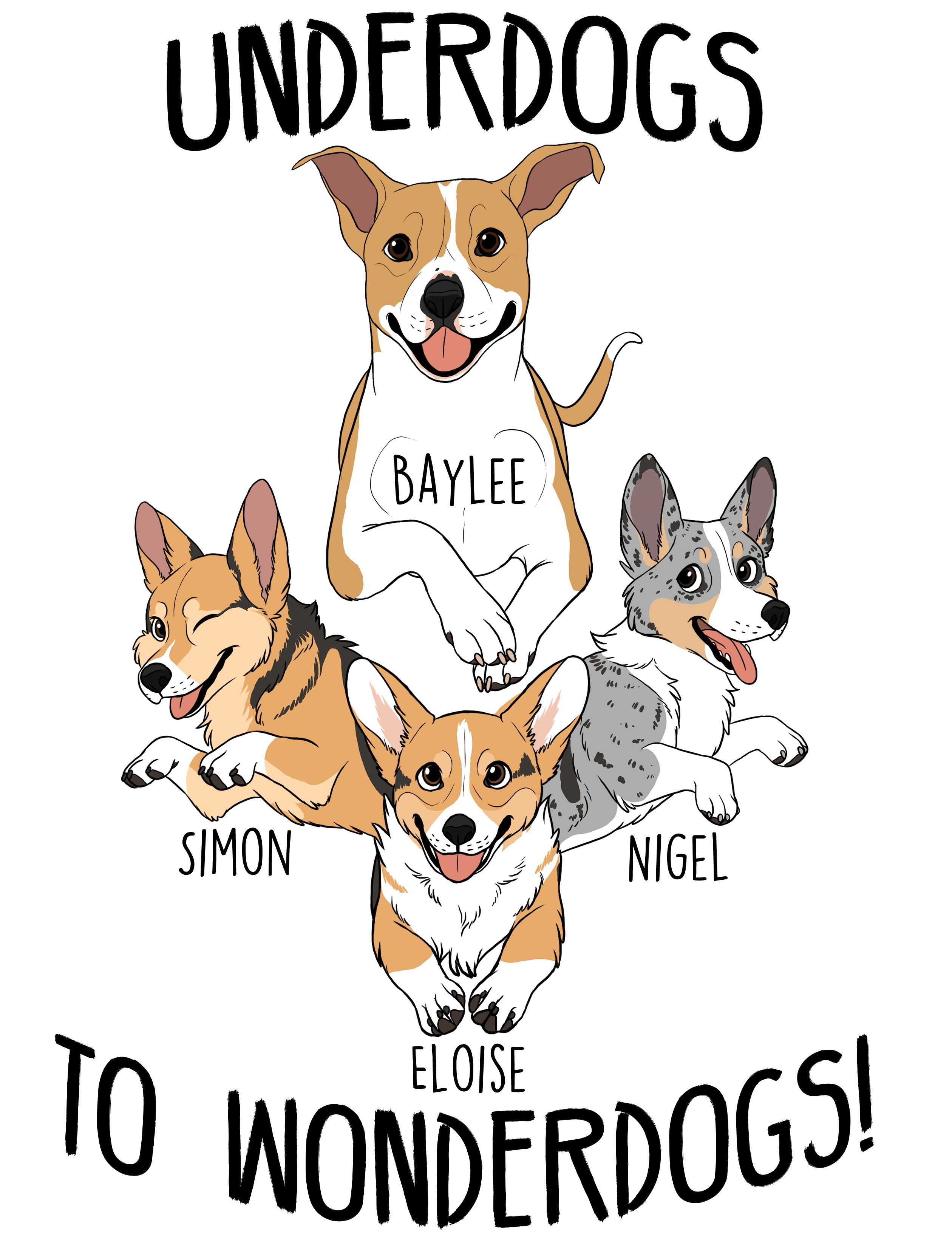agility pups