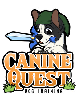 canine_quest2