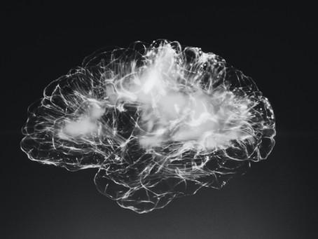 Warianty genetyczne i kora mózgowa. Jak niekodujące elementy DNA wpływają na zaburzenia psychiczne.