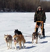 Dog Sledding, One Throne Magazine