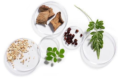 Ingredients Petris.jpg